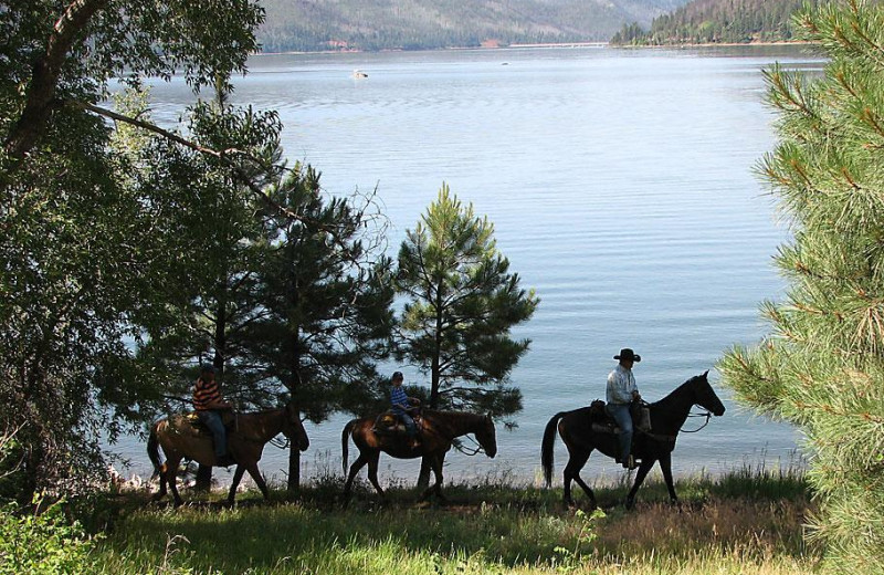 Horseback riding at Lone Wolf Cabins and Getaway.