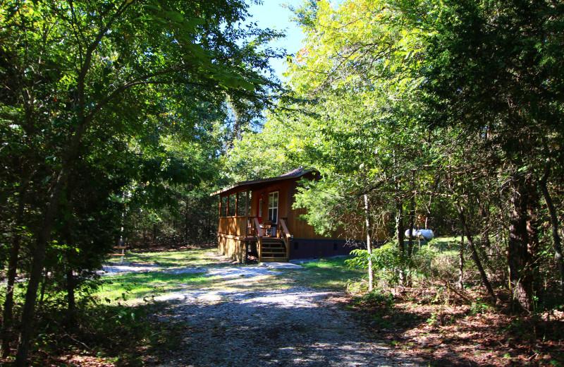 Enjoy the natural surroundings at Ozark Cabins.