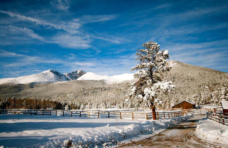 Winter at Wind River Ranch