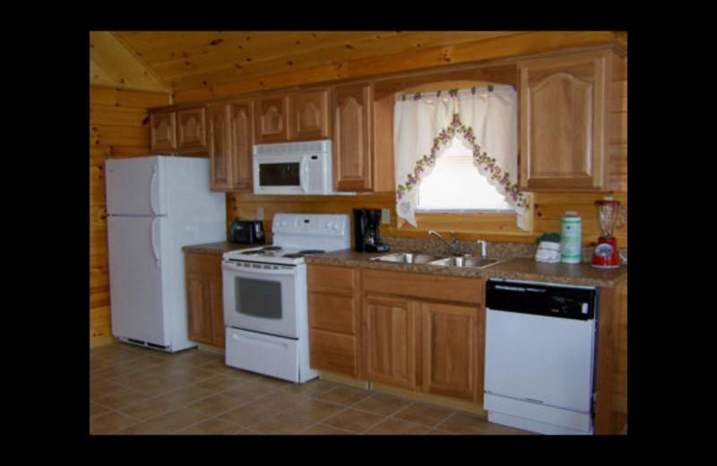 Cabin kitchen at Mountain Shadows Resort.