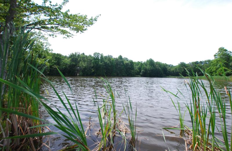 The lake at Lake Ridge Resort.