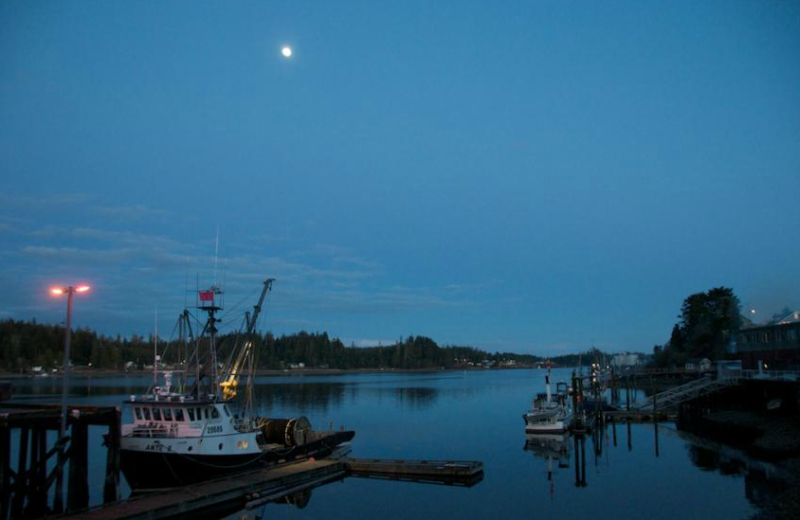 Fishing boats in the harbor at The Cabins at Terrace Beach.