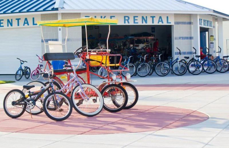 Bike rentals at Paradise Oceanfront Resort.