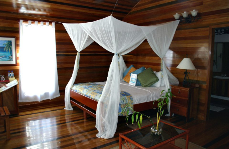 Guest room at Turneffe Island Resort.