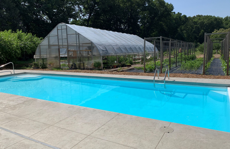 Outdoor pool and gardens at Goldberry Inn.