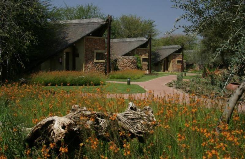 Exterior view of Tau Game Lodge.