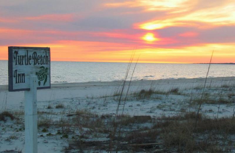 The beach at Turtle Beach Inn.