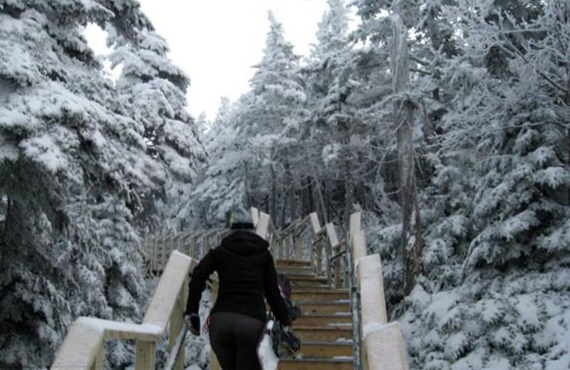 Winter time at Birch Ridge Inn.