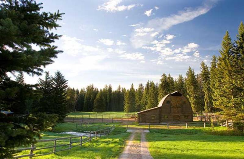 The ranch at Trail Creek Ranch.