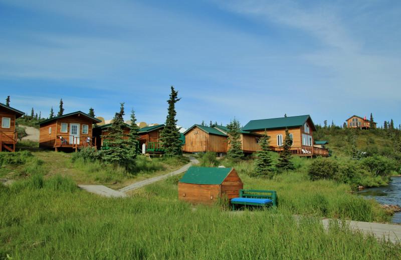 Cabins at Alaska Trophy Adventures Lodge.