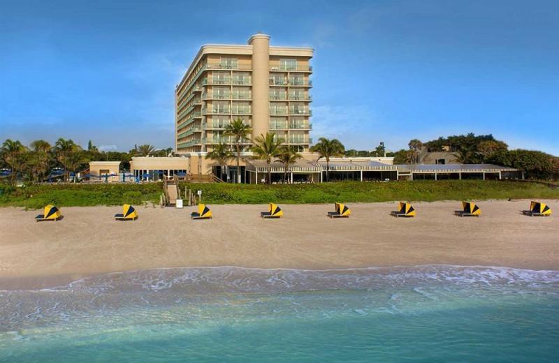 Beach view at Hilton Singer Island Oceanfront Resort.