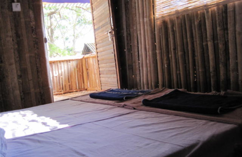 Guest room at Blue Planet.