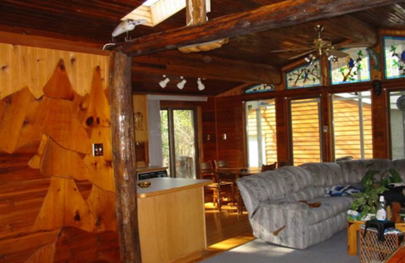 Cabin living room at The Greenback Hunter.