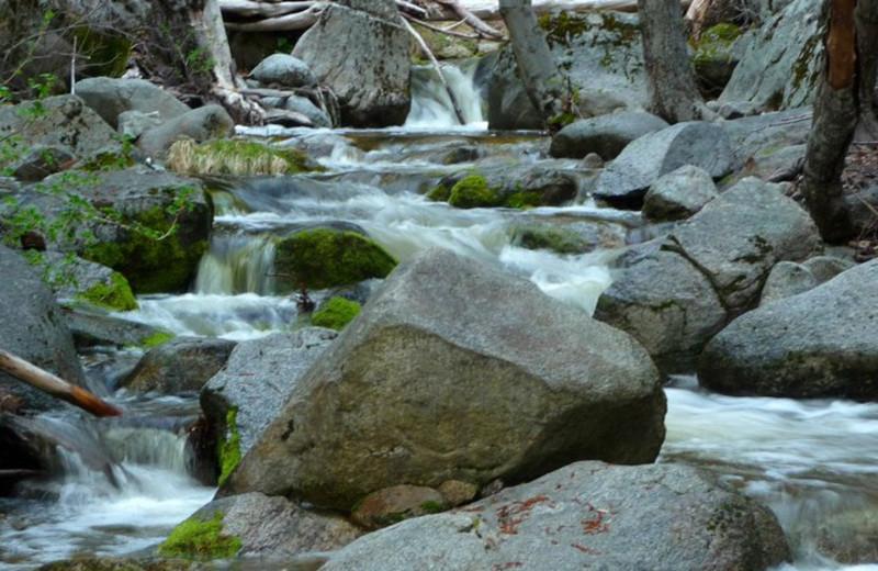 Creek at Idyllwild Vacation Cabins.
