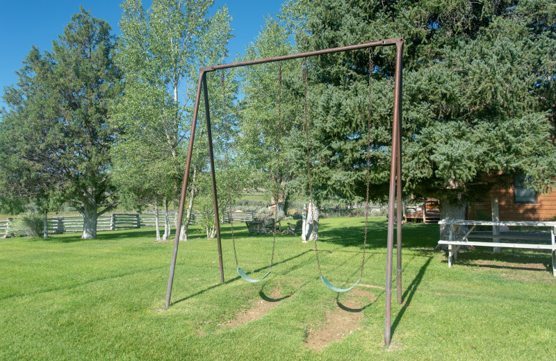 Swings at Cottonwood Meadow Lodge.
