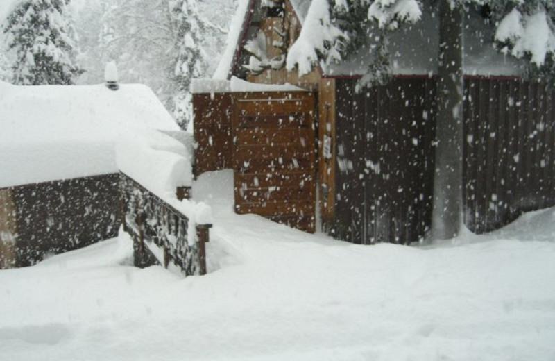 Snowfall on Northwoods Lodge.