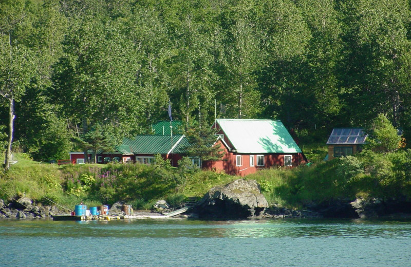 Exterior view of Munsey's Bear Camp.