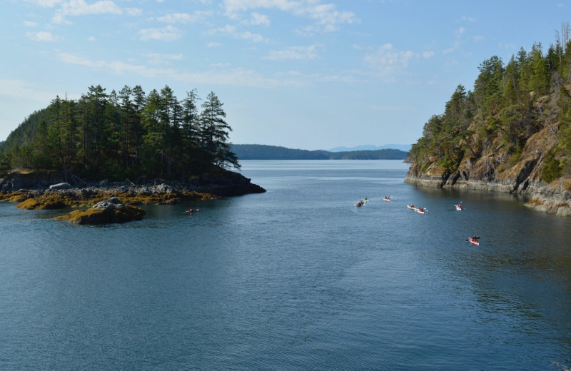 Scenic view at Orca Camp.
