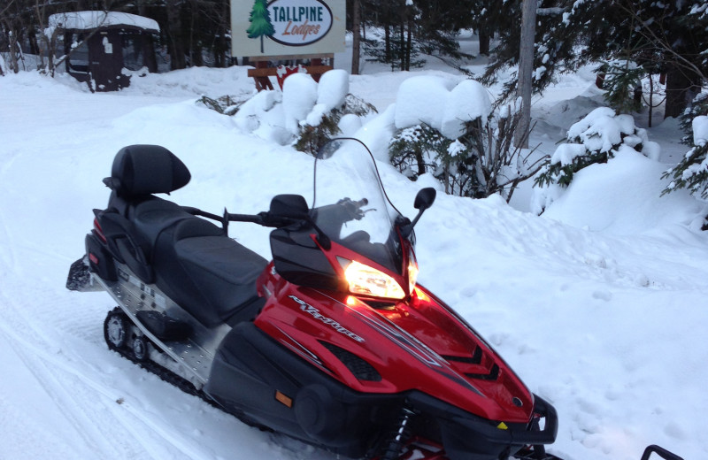Snowmobiling at Tallpine Lodges.
