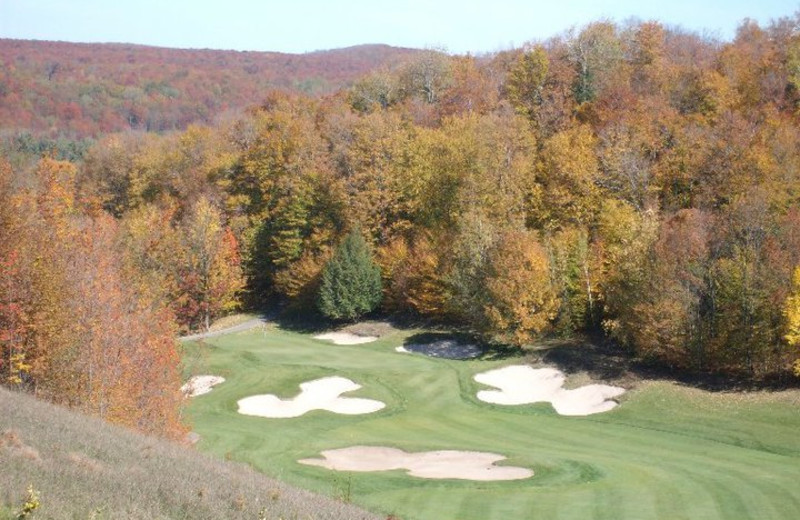 Golf Course at Treetops Resort