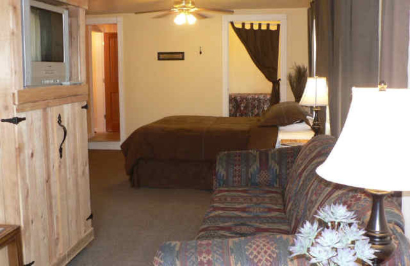 Living Area w/ Bed at Alpaca Inn