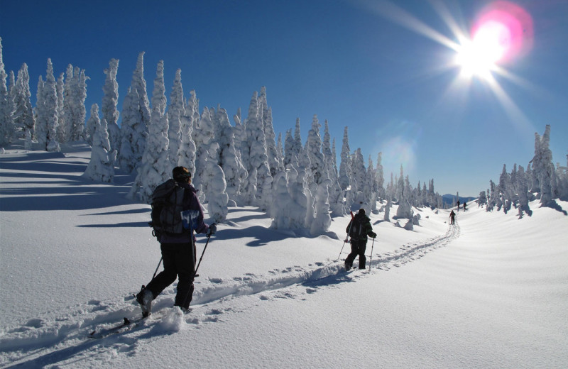 Skiing at Fernie Central Reservations.