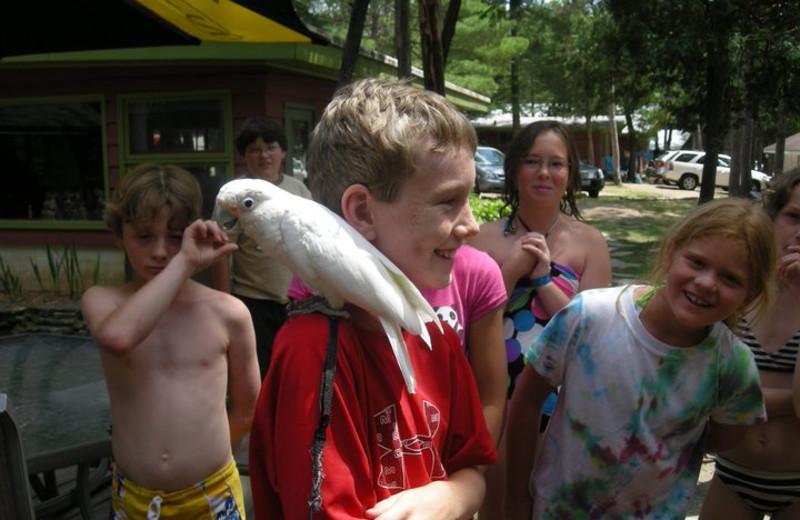 Animal Fun at Scharenberg's White Lake Golf Resort