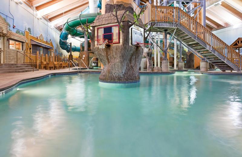 Water park at Holiday Inn Minneapolis NW Elk River & Wild Woods Waterpark.