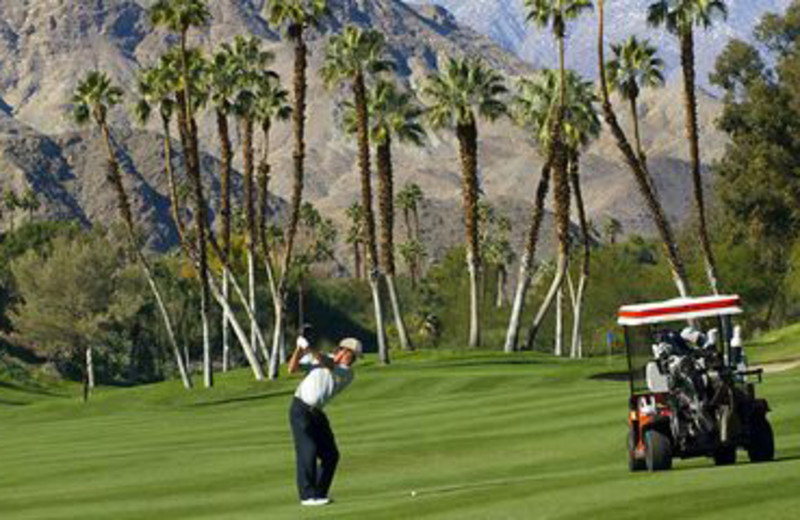 Hitting the Greens at Rancho Las Palmas Resort