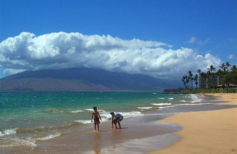 The beach at Maui Vacation Rentals.