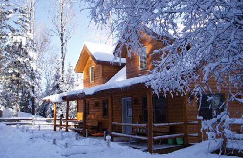 Cabin  in winter at Timber Trail Lodge & Resort.