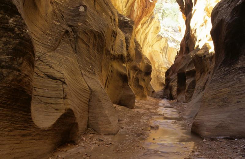 Willis Creek Slot Canyon near Stone Canyon Inn.