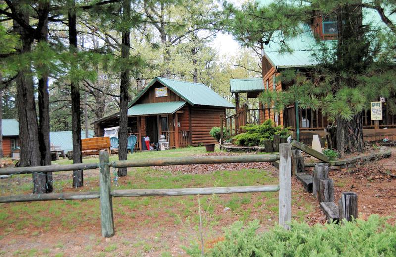 Cabins at Cabin Fever Resort.