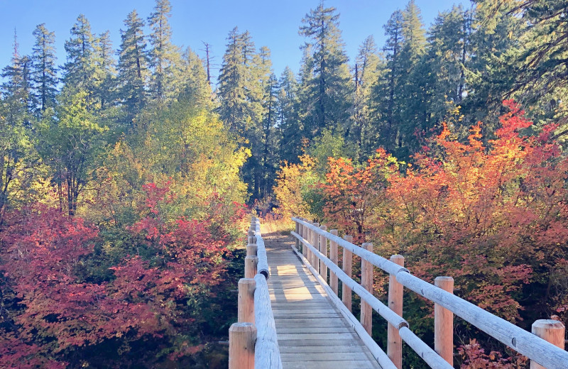 Fall at McKenzie River Mountain Resort.