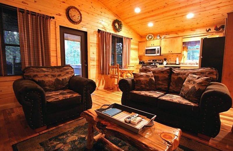 Rental living room at Georgia Mountain Rentals.
