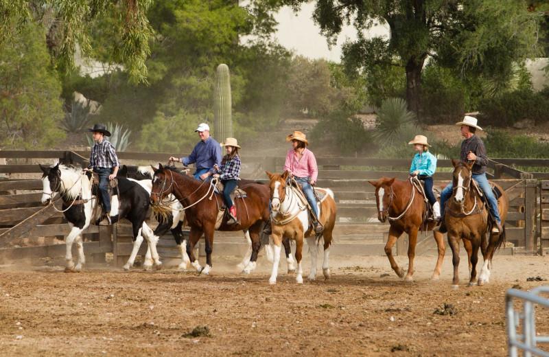 Horse riding at Rancho De Los Caballeros.