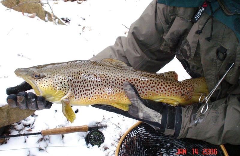 Fishing in Winter at the Nantahala River Lodge.