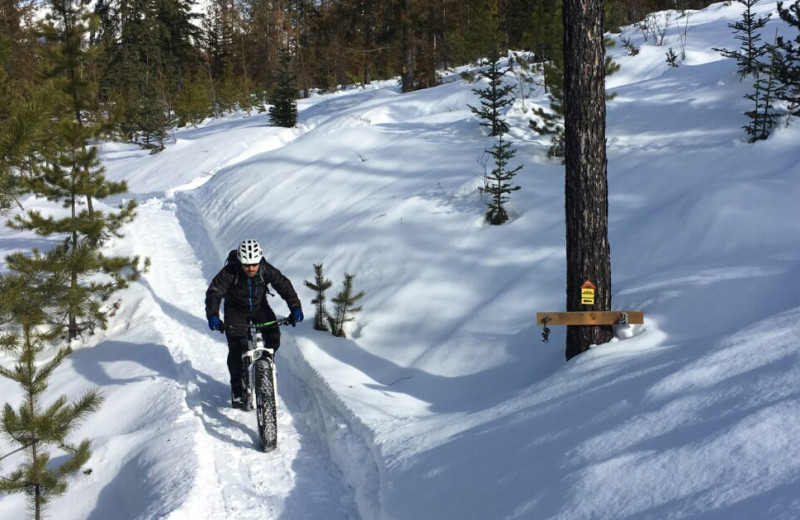 Fat biking at Fernie Central Reservations.