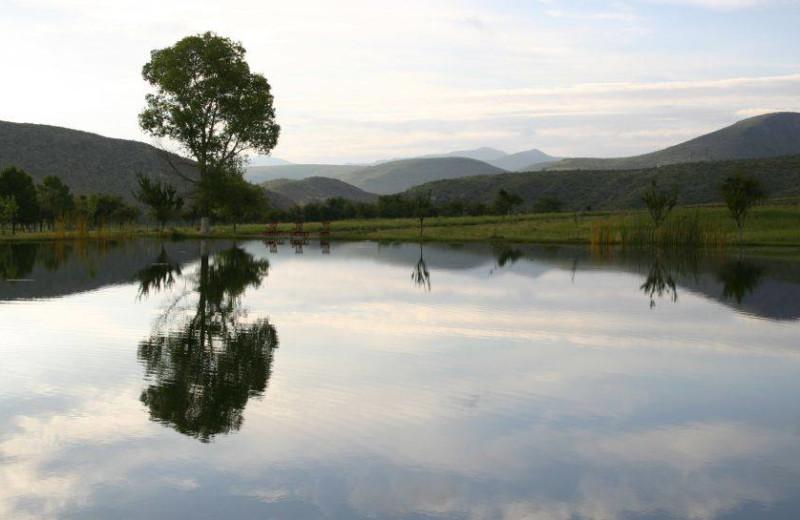 Scenic view at Cibolo Creek Ranch.