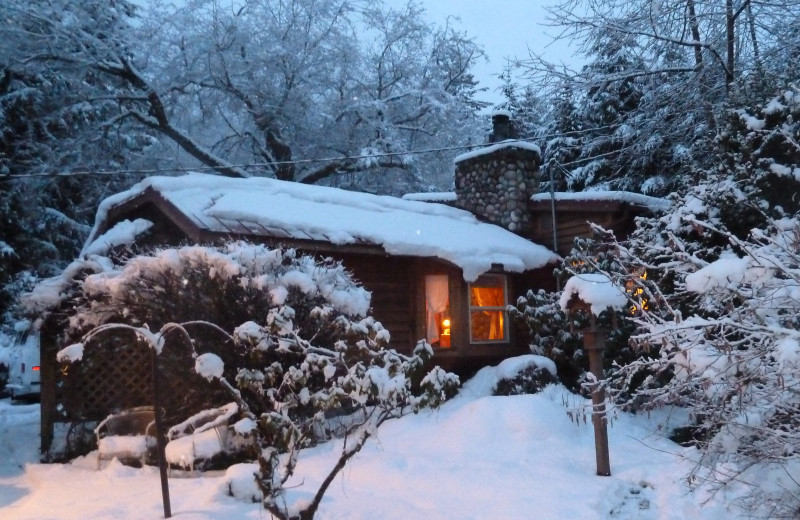 at lodging cabin mount cabins near by luxury mt rainier glowing rentals pines