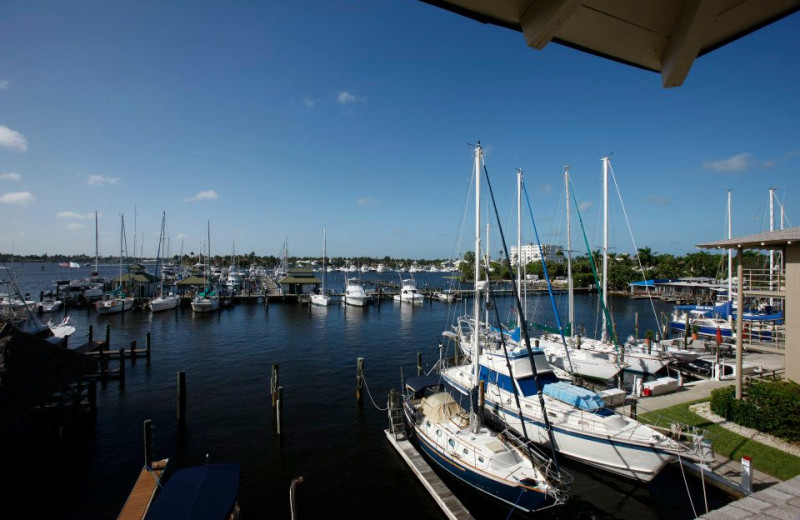 Marina view near Cove Inn on Naples Bay.