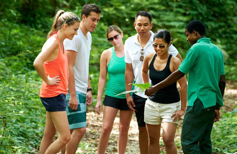 Jungle tour at Bluefields Bay Villas.