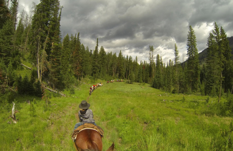 Trail riding at Shoshone Lodge & Guest Ranch.