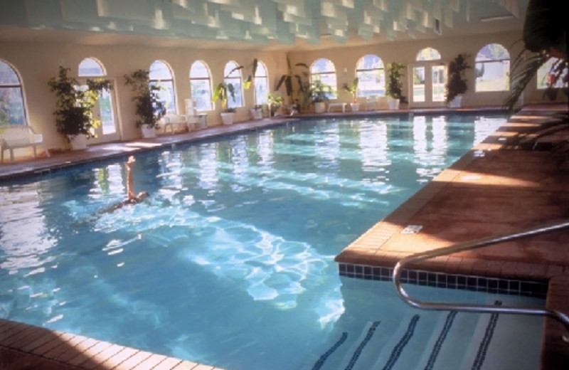Indoor pool at Red Mountain Resort & Spa.