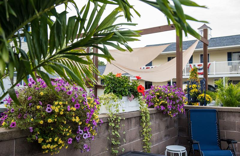 Patio at Footbridge Beach Motel.