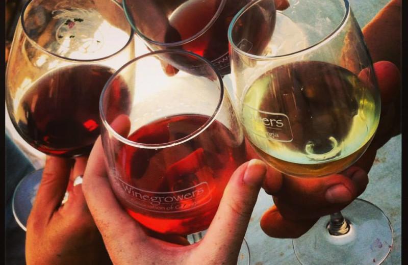 Wine dinner at Dahlonega Spa Resort.