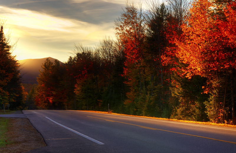 Scenic drives at North Conway Lodging.