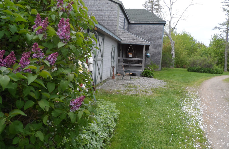 Cottage exterior at Rossport Lodging & Retreat.