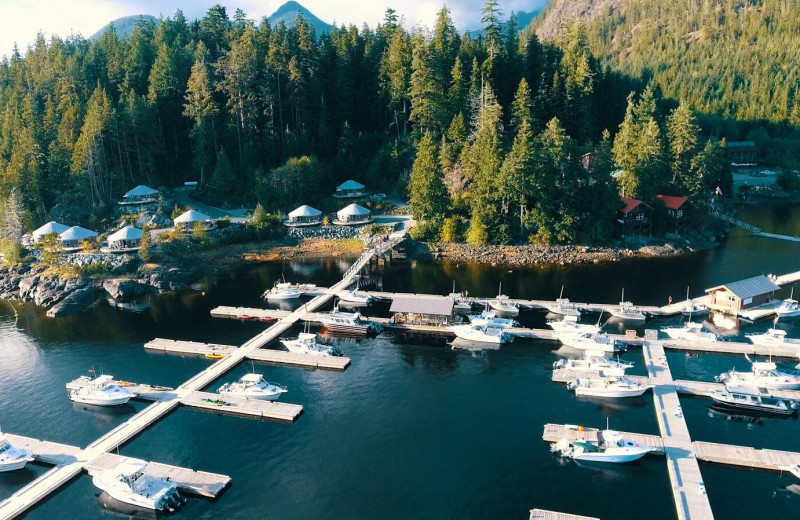 Aerial view of Nootka Marine Adventures.