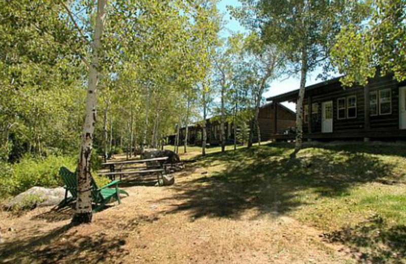 Rear of Cabins at Lakeside Lodge
